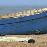 Rescatadas otras siete pateras del PP en aguas de Ciudadanos